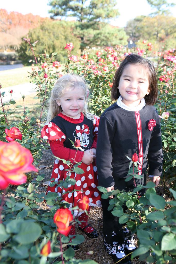 Girls in roses