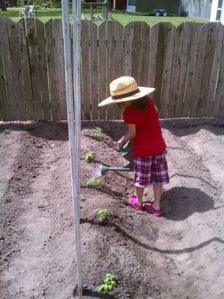 Planting Day 8